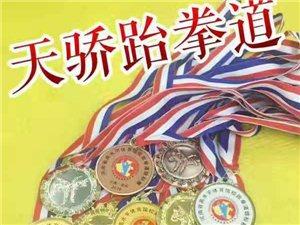天骄跆拳道――健体、启智、育心、知礼