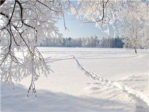二十四节气――大雪