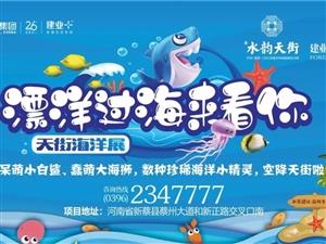 建�I・水�天街【�@喜天街】漂洋�^海�砜茨�-天街海洋展,登�新蔡啦!