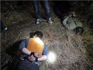 彭山警民�y手��剿流�Z�I�`�F伙!3名犯罪嫌疑人已被依法刑事拘留!