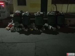 我们小区这些垃圾是打算留着过年吗