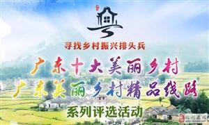 """化州这2条村要火了!入选""""广东十大美丽乡村""""参评名单!"""