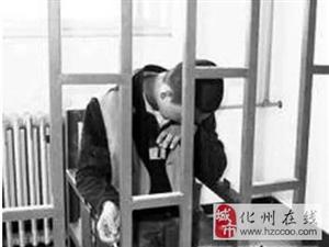 化州这个男子被判刑兼罚款......咩事?