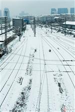 冬天到了,玩雪去。