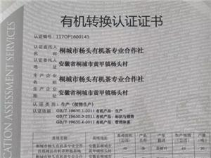 好消息!桐城杨头有机茶专业合作社获有机转换认证!