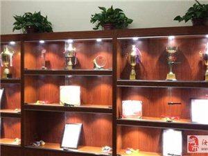 扬德武院――专业跆拳道培训机构