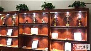 扬德武院——专业跆拳道培训机构