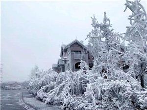 �S都下雪了,要去山上看雪的朋友���注意�@件事情!
