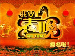 2019年(首届)蓝田县百姓网络春晚