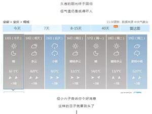 升!升!升!桐城飙涨16℃!接下来.......