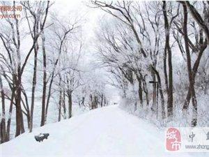 �槭裁匆�在冬天�猿衷缙穑�