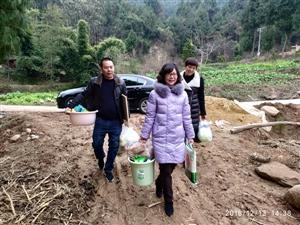 梓潼县政协副主席杨世茹调研二洞村脱贫攻坚工作