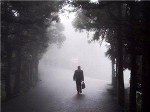 上海一位父�H立下�z�冢号���,你的孝心只值1�K�X