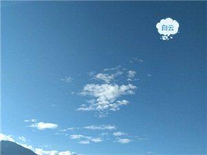 青山,蓝天,那一朵花。