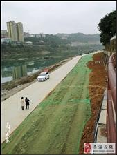 【苍溪】城区段河道整治基础设施建设【图】