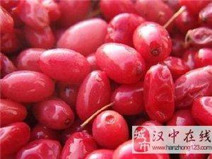 牛气!汉中新增5件地标农产品总量陕西第一