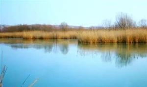 合阳故事――瀵泉的传说