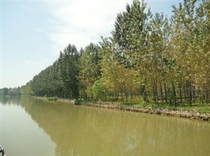 合阳故事――白灵村的传说