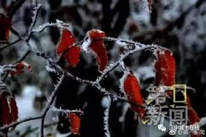 威尼斯人网上娱乐平台又下雪了,还出现冰挂奇景,美出新高度!