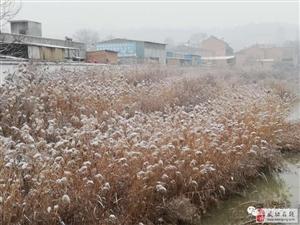 【武功古城】瑞雪兆丰年丨古城迎来2018年第一场雪,美哭了~