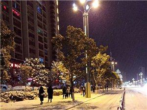 昨夜的昭通城,下雪的�鼍耙欢ㄗ�你�@�G不已