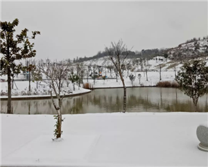 望江下大雪啦,2018年末的最后一场雪,超美雪景一睹为快!!