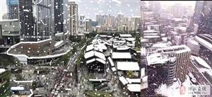 全国各地晒雪景,博兴人只能看看不说话