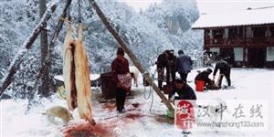 略阳大地漫天雪飘,农家宰猪年味浓浓