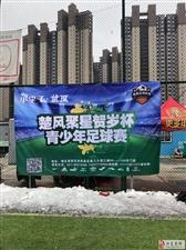 江夏实验小学足球队2019楚风聚星贺岁杯青少年足球赛夺冠