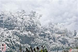 2018年阆中第二场雪东山园拍摄