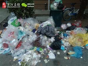 """我哩乖乖!漯河这个小区真""""垃圾""""!"""