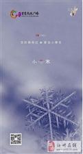 【绿洲・望嵩文化广场】小寒