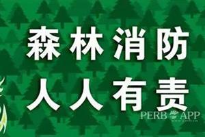 @景东人,进入森林防火期,这些规定需谨记!