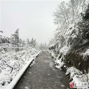 金孔福广山上看雪(尾巴老幺)