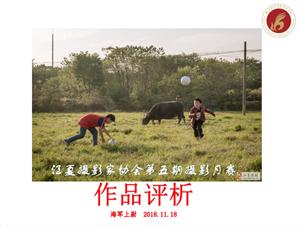江夏摄影家协会第五期双月赛作品揭晓及作品评析