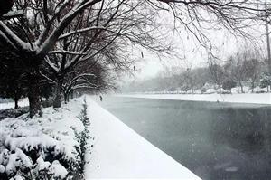 雪雪雪雪雪雪雪雪临泉要下大雪啦!