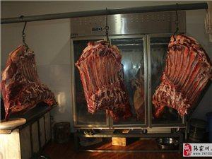 【��家川特�a】�碜躁P山草原上的牛羊肉,李�V�④�都喜�g吃