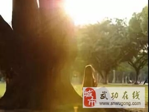 【绿野书院】司红霞:【你好,2019】(外一首)