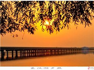 ��城�|汊湖�L光