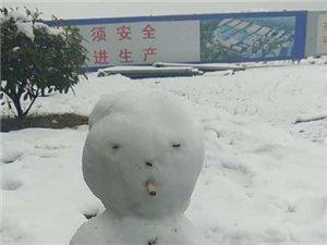 """2019年的第一场雪,来的那么""""可爱"""""""