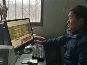 """河阴石榴网上已卖出5.3亿元,""""互联网+""""为荥阳农产品插上腾飞翅膀"""