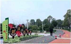 美!桐城三大公园形象大提升