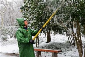 2019年第一场雪