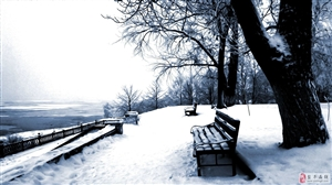 翻阅中外妙文,邂逅最美冬景
