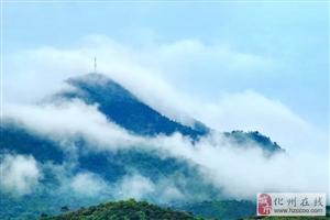 快讯!化州2条村入选2018年茂名十大美丽旅游乡村