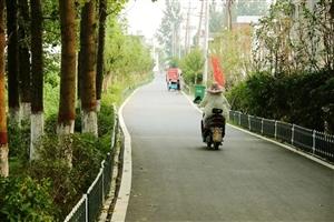 临泉这个乡镇要改名字了,快看看是不是你家!