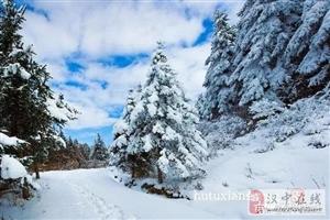 """汉中也有个""""林海雪原""""!葱滩湿地公园的雪景太美了!"""