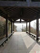 将(qiang)爬花山