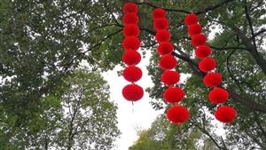 【2019春节】新年气氛已经来了,广汉房湖公园大红灯笼已经高高挂起