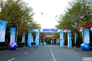 揭西举办首届冰雕美食文化节